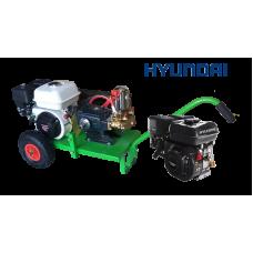 Βενζινοκίνητο ψεκαστικό συγκρότημα σε απλή  βάση με ρόδες 300 - κινητήρα HYUNDAI 6.5HP - αντλία TF40